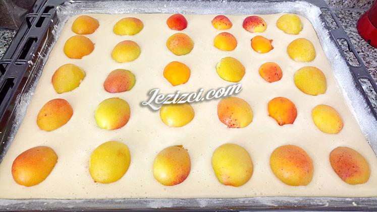 Taze Kayısılı Kek Nasıl Yapılır